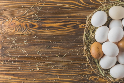 Imagem notícia Afinal, comer ovo faz bem ou faz mal à saúde? Confira o que diz a Ciência