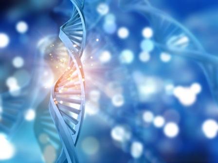 Imagem notícia Nova técnica de edição de DNA poderá curar até '89% das doenças genéticas' no futuro
