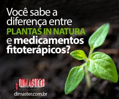 Imagem notícia Você sabe a diferença entre plantas in natura e medicamentos fitoterápicos?